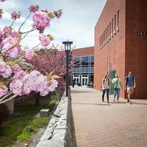 Spring at ASU