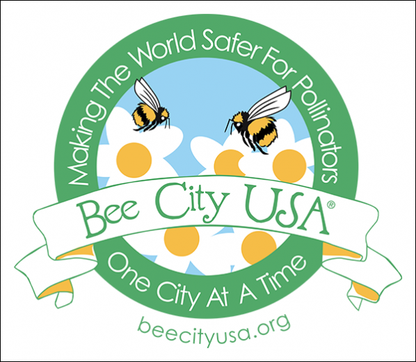 Appalachian is one of 61 Bee Campuses across the nation providing safe, sustainable habitats for pollinators. Appalachian received the designation from the The Xerces Society. Illustration courtesy of The Xerces Society Inc.