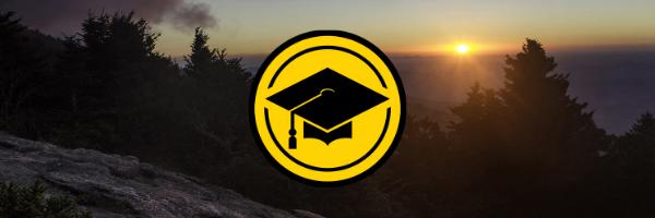 Graduate or Professional School