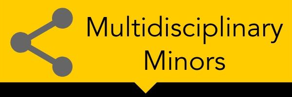 CAS Multidisciplinary Minors