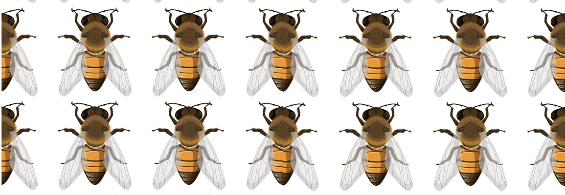 Image of honeybees, from <a href='https://www.freepik.com/vectors/background'>Background vector created by brgfx - www.freepik.com</a>