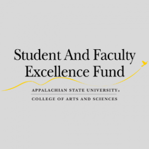 Student and Faculty Excellence Fund (SAFE)