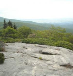 National Park Service Internships: The Blue Ridge Parkway